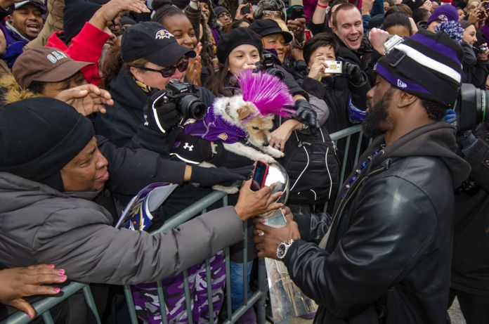 ravens_superbowl_parade_baltimore_what_weekly_14