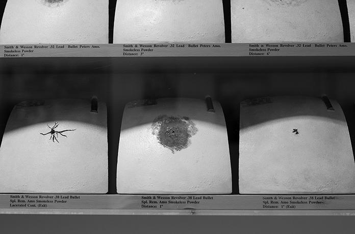 Frances Glessner Lee, Ceramic Chest Plates, detail 2, Photograph by Kristine Thompson